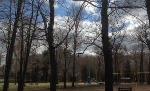 2016-03-31 Park